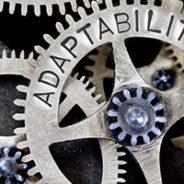 Adaptability: The Underestimated Skill