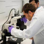 Scientific Team Collaboration