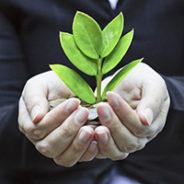 Sustainability – Looking Beyond Federal Funding