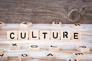 Building an Organization's Performance Culture
