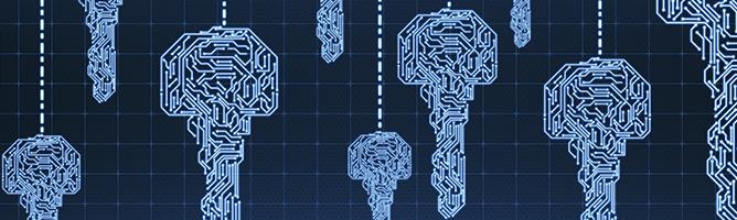 Digital network security concept